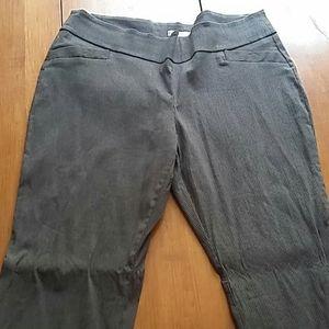 Pull-on Gray Pinstripe Pants